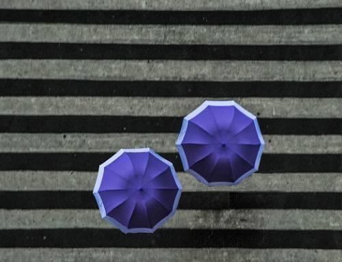 Çok Şey Anlatan Sadelik: Yeni Başlayanlar İçin Fotoğrafta Minimalizm